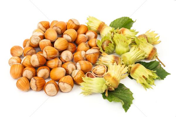 Hazelnut bunch Stock photo © erierika