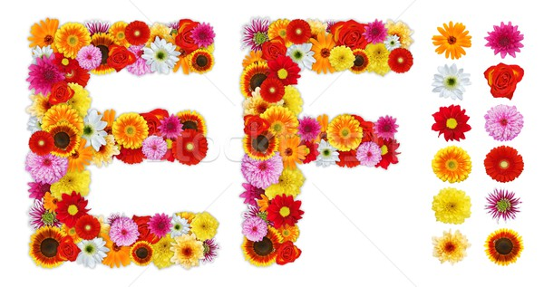 Characters E and F made of various flowers Stock photo © erierika