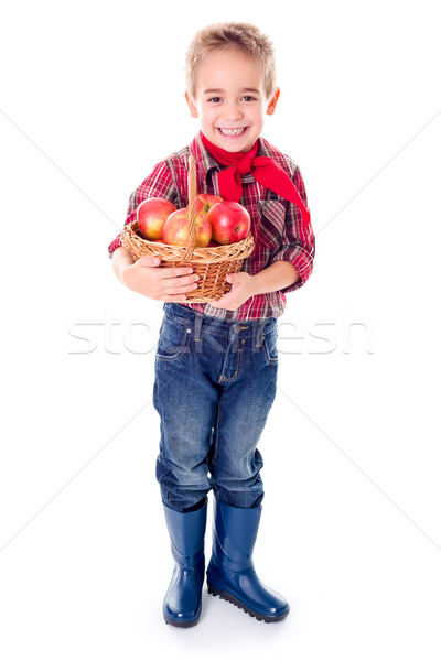 Little farmer boy with apples in basket Stock photo © erierika