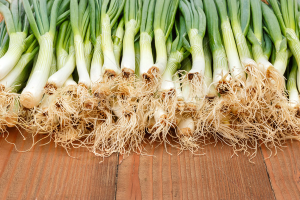 Spring onions on wooden board Stock photo © erierika