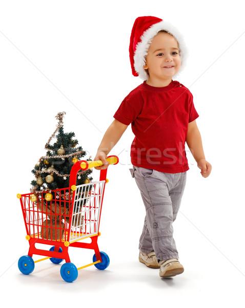 Foto stock: Pequeño · nino · cesta · de · la · compra · navidad · árbol