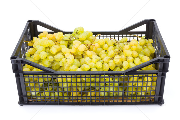 White table grapes (Vitis) in plastic crate Stock photo © erierika