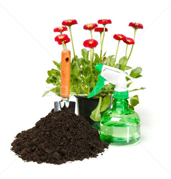 Flower planting tools and dirt Stock photo © erierika