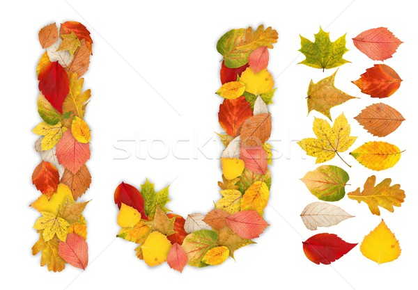 Characters I and J made of autumn leaves Stock photo © erierika