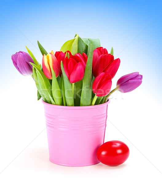 Tulips in pink bucket and red Easter egg Stock photo © erierika
