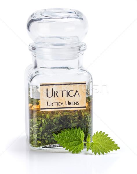 Planta suelo hojas etanol verde Foto stock © erierika