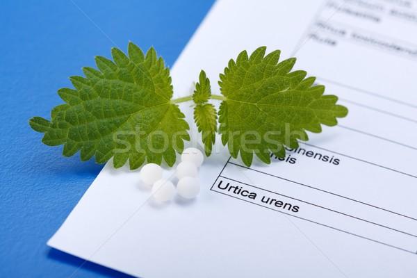 Hapları homeopatik levha homeopati yaprakları top Stok fotoğraf © erierika