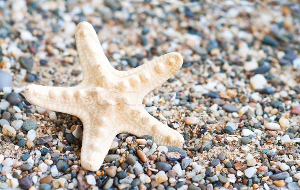 Praia pedras colorido verão grupo rocha Foto stock © Es75