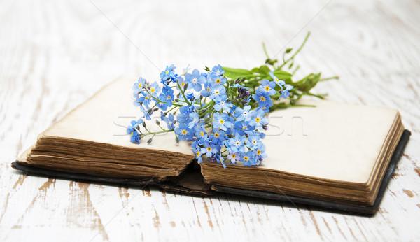 Flores libro viejo libros fondo belleza Foto stock © Es75