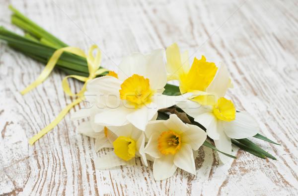 нарциссов весны старые лист лет Сток-фото © Es75