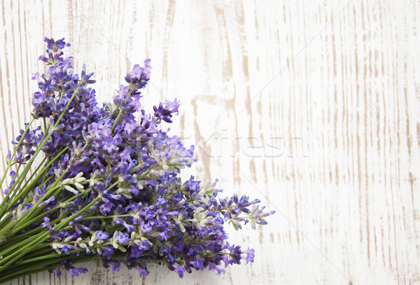Lavender Stock photo © Es75