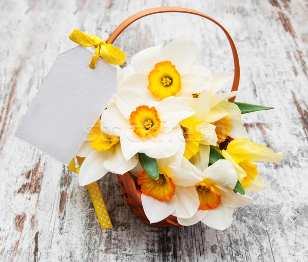 daffodils in basket Stock photo © Es75
