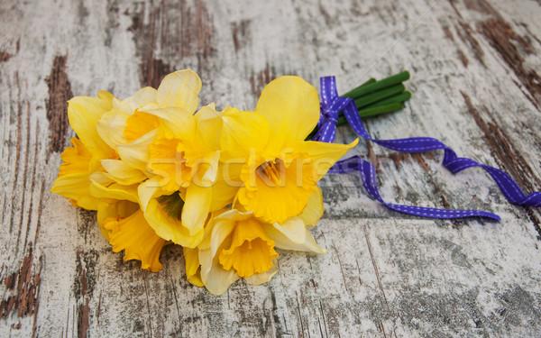 Abrótea flores fita primavera feliz Foto stock © Es75
