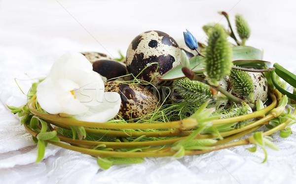 Húsvéti tojások tavasz kikerics fűzfa virág Stock fotó © Es75