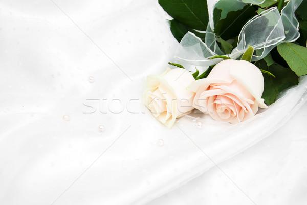 roses on white silk background Stock photo © Es75