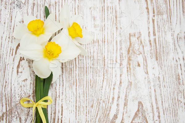 Narcisos primavera edad hoja verano Foto stock © Es75