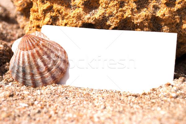 üres papír tengerparti homok kagyló papír természet nyár Stock fotó © Es75