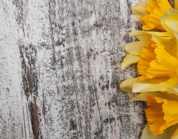 Narcissen houten grens narcis bloemen Pasen Stockfoto © Es75