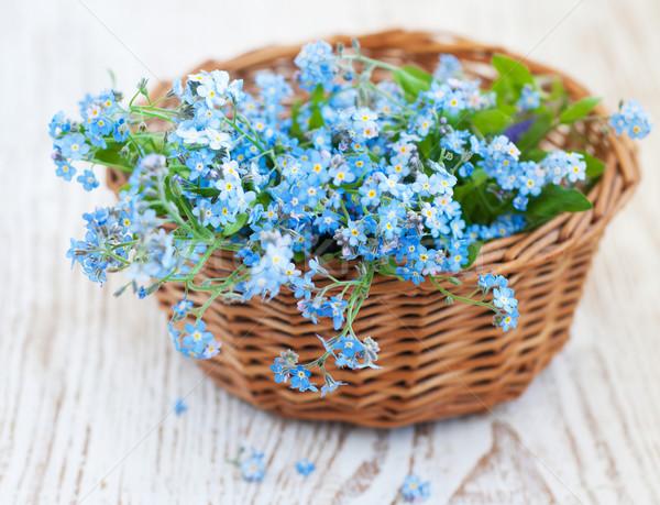 цветы корзины цветок весны лист Сток-фото © Es75