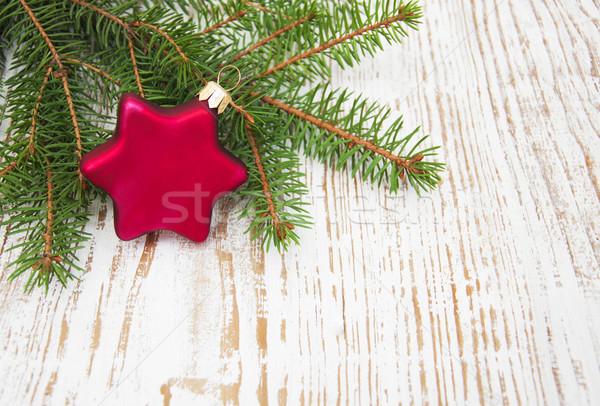 Pine tree branch Stock photo © Es75