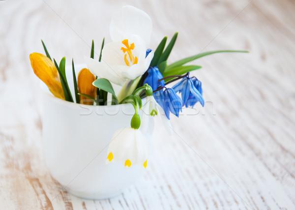 Tavaszi virágok kikerics váza zöld kék fej Stock fotó © Es75