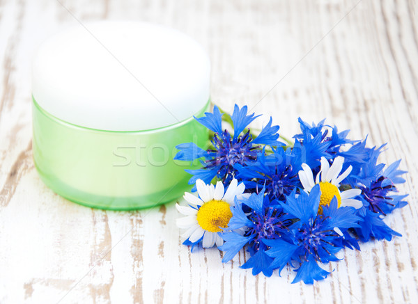 Pojemnik krem biały charakter liści Zdjęcia stock © Es75