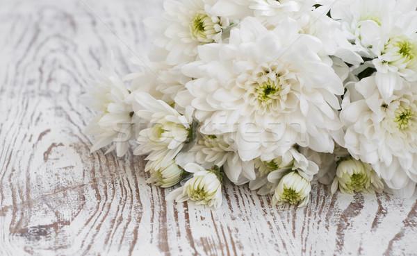 Weiß Chrysantheme Bouquet Holz Blume Frühling Stock foto © Es75