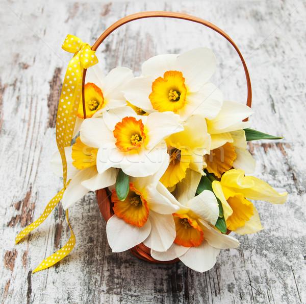 корзины нарциссов Daffodil цветы старые Сток-фото © Es75