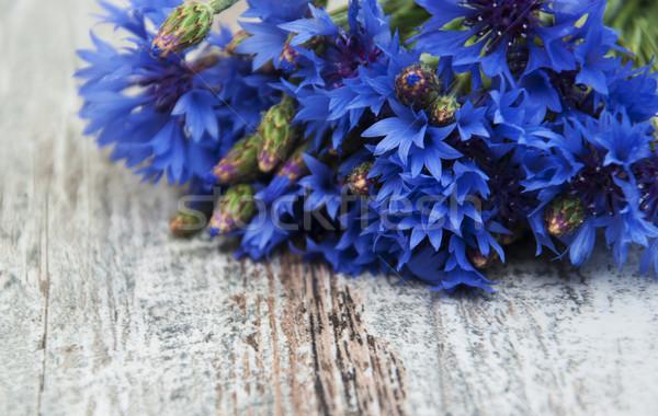 Bukiet niebieski starych kwiaty wiosną Zdjęcia stock © Es75