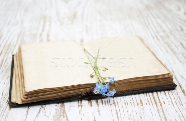 Starej książki kwiaty książek tle piękna Zdjęcia stock © Es75