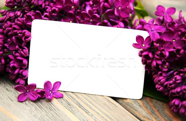 Foto stock: Lila · flores · vacío · tarjeta · edad