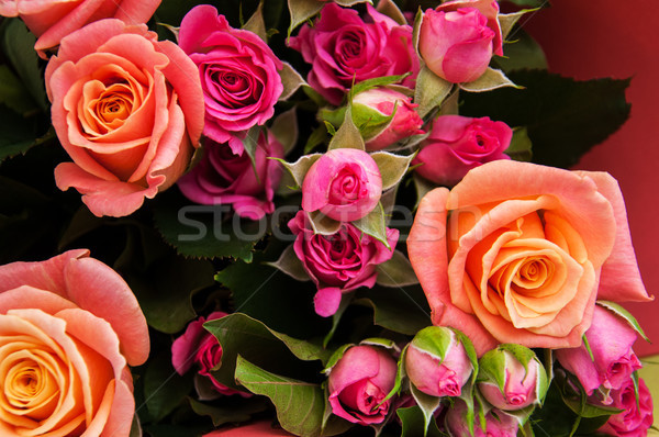 Virágcsokor rózsaszín rózsák gyönyörű virág textúra Stock fotó © Es75