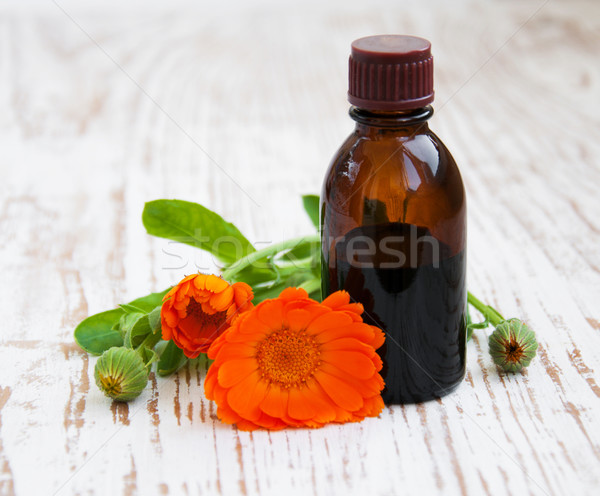 Herbal medicine Stock photo © Es75
