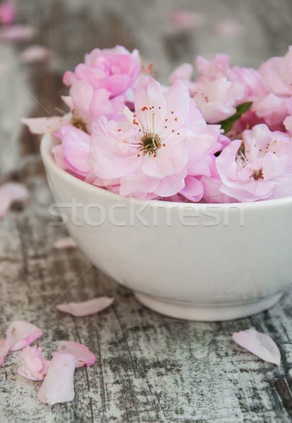 Fiori sakura fiori ciotola acqua vecchio Foto d'archivio © Es75