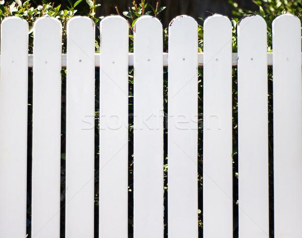 Witte houten hek groene planten hout Stockfoto © Es75