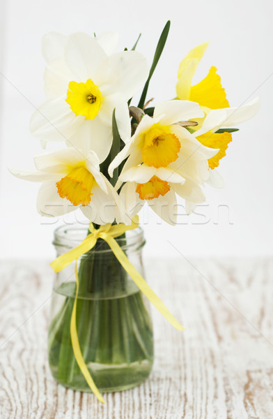 Narcisos primavera velho folha verão Foto stock © Es75