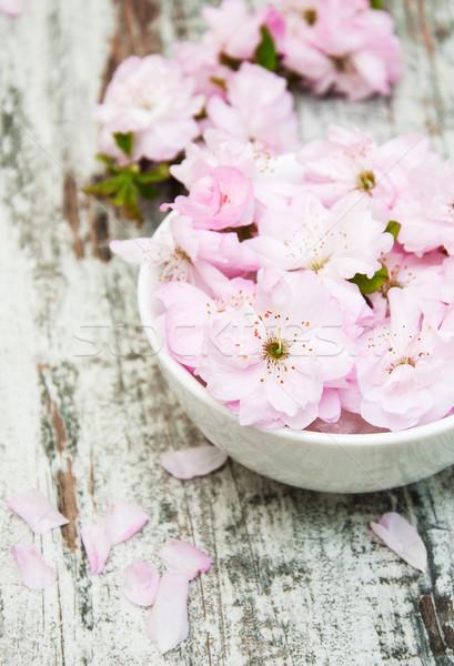 Bloemen sakura bloesems kom water oude Stockfoto © Es75