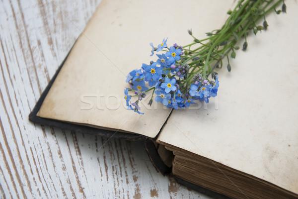 Kwiaty starej książki książek tle piękna Zdjęcia stock © Es75