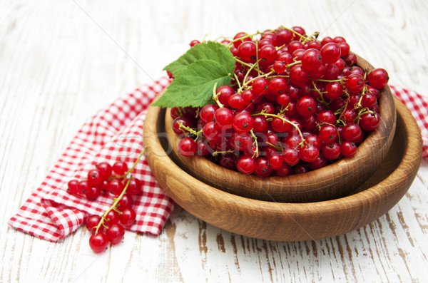 Redcurrant Stock photo © Es75