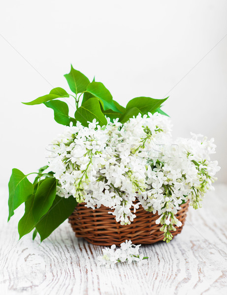 Bouquet of a white  lilac Stock photo © Es75