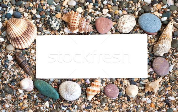 üres papír tengerparti homok kagylók papír természet nyár Stock fotó © Es75