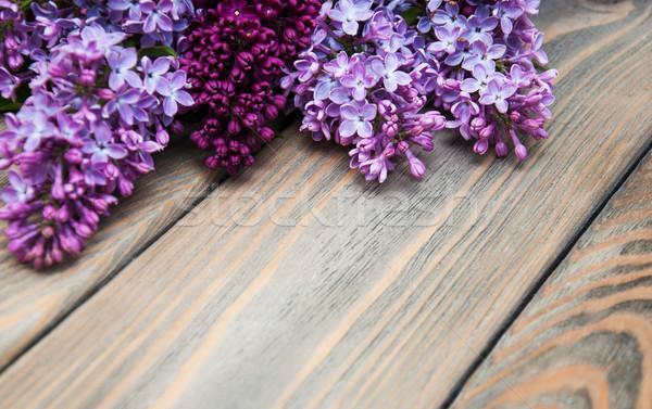 Liliowy kwiaty starych drzewo charakter Zdjęcia stock © Es75