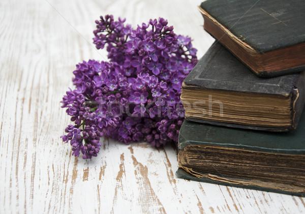 старые книгах сирень филиала весны Сток-фото © Es75