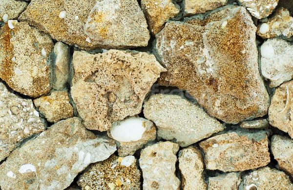 Oude fossiel muur huis abstract ontwerp Stockfoto © Es75