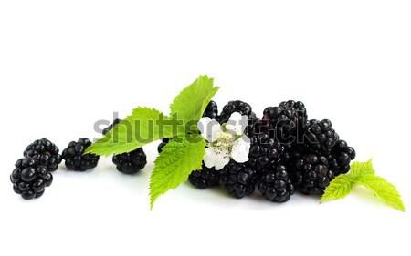 Blackberries Stock photo © Es75