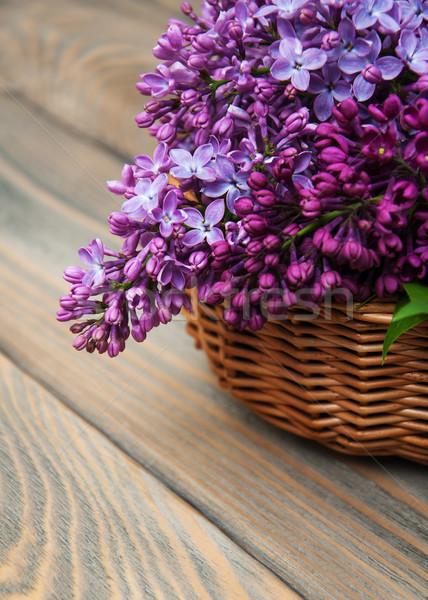 Сток-фото: сирень · цветы · старые · цветок · древесины