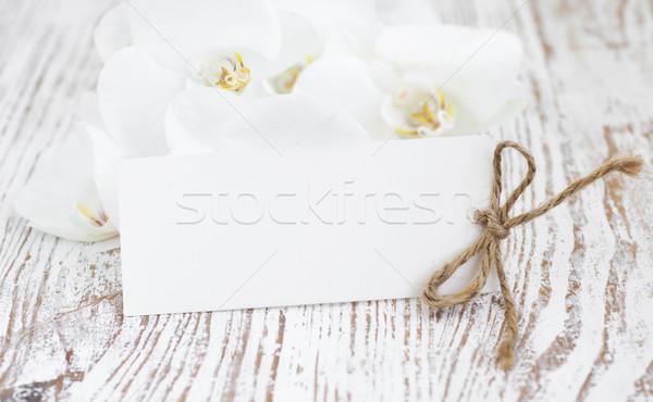 Orkide boş kart beyaz ahşap doğa arka plan Stok fotoğraf © Es75