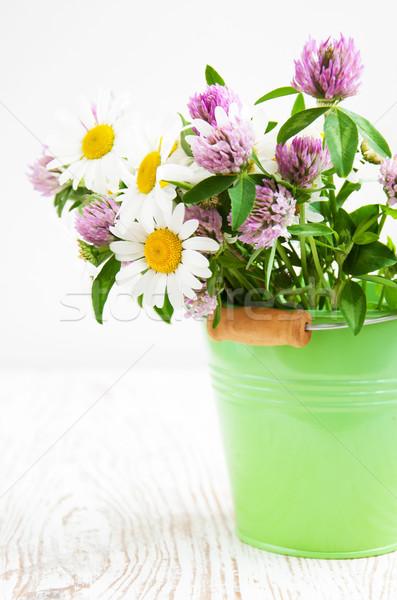 Cubo flores silvestres naturaleza jardín verano Foto stock © Es75