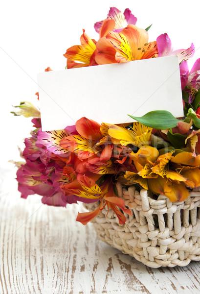 ストックフォト: 花 · 白 · カード · メッセージ · 紙 · 春