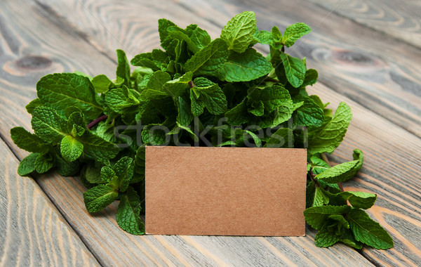 Folhas de etiqueta velho papel Foto stock © Es75